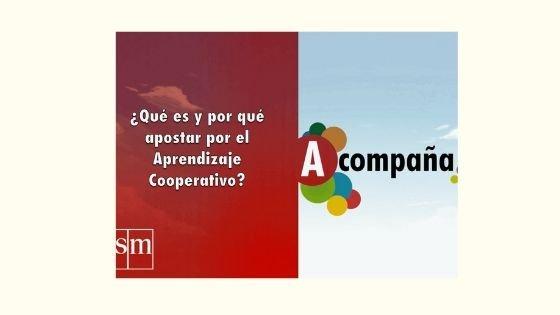 Aprendizaje cooperativoSavia digital